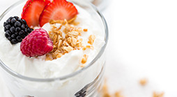Preparation of Premixes for Yogurt and Other Cultured Milk Desserts - TR