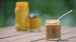 Preparation of Mustards - TR
